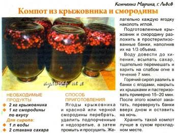 Компот из черной смородины рецепт на каждый день