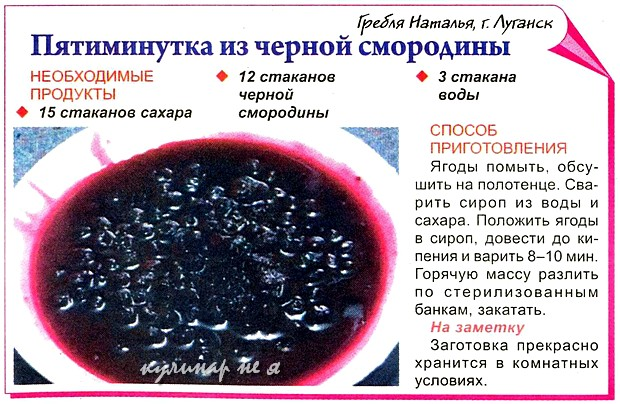Черная смородина рецепты на зиму